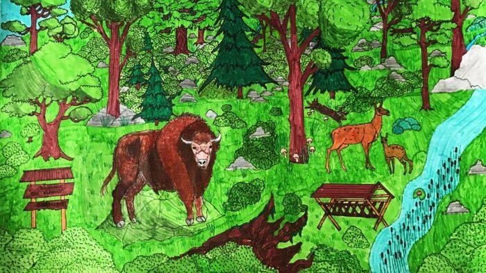 Ilustracja przedstawia rysunek - pracę plastyczną jednego z uczniów. Praca utrzymana w kolorystyce zieleni i brązu. Ukazuje gęsty las ze zwierzętami: żubrem i sarnami, a także rzeką i paśnikiem.